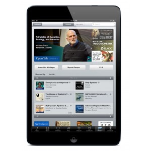 Apple iPad Mini Wi-Fi LTE 16GB Black
