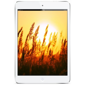 Apple iPad Mini Wi-Fi 16GB White
