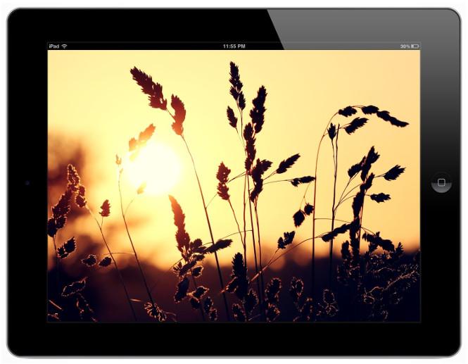 Низкая стоимость на Apple line на iPad с дисплеем ретина. Покупайте выгодно.