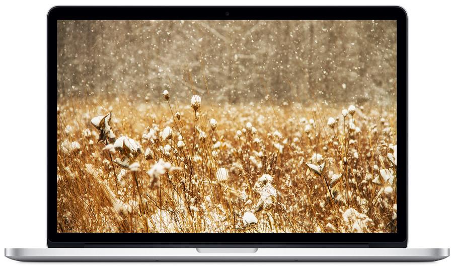 macbook pro по отличной цена в Apple line