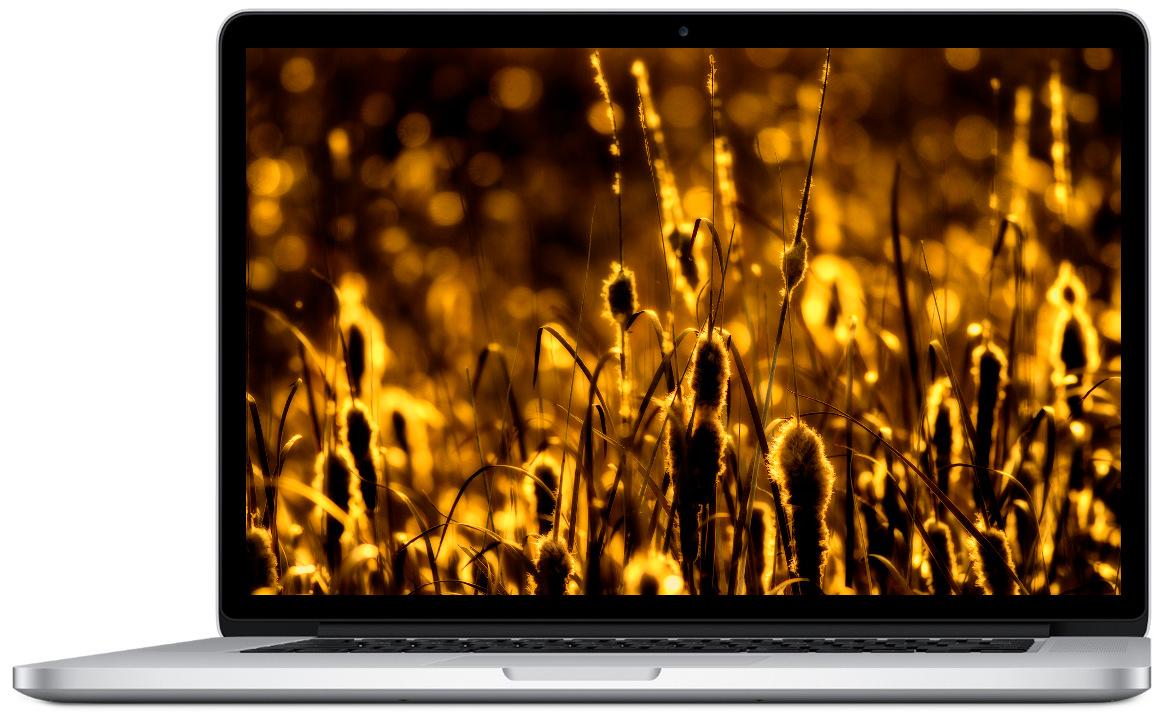 Только в Apple line самая низкая цена в Киеве и Украине на MacBook Pro Retina